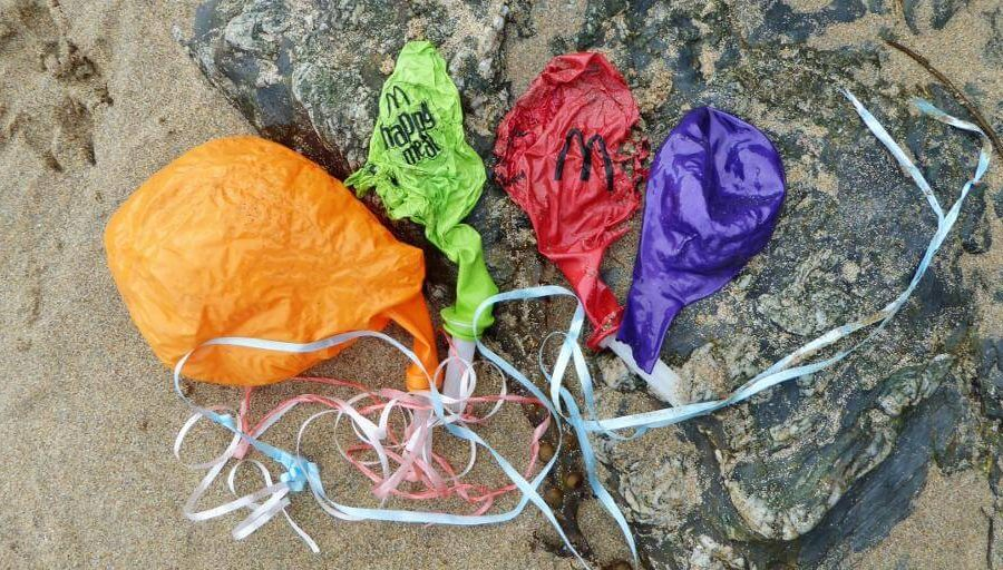Balloons confirmed as number one killer for seabirds by University of Tasmania research