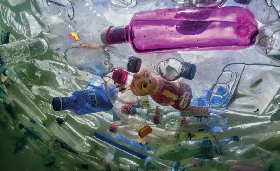M&S, Nestlé, P&G and TerraCycle latest speakers confirmed for Plastic Free World Conference & Expo 2019
