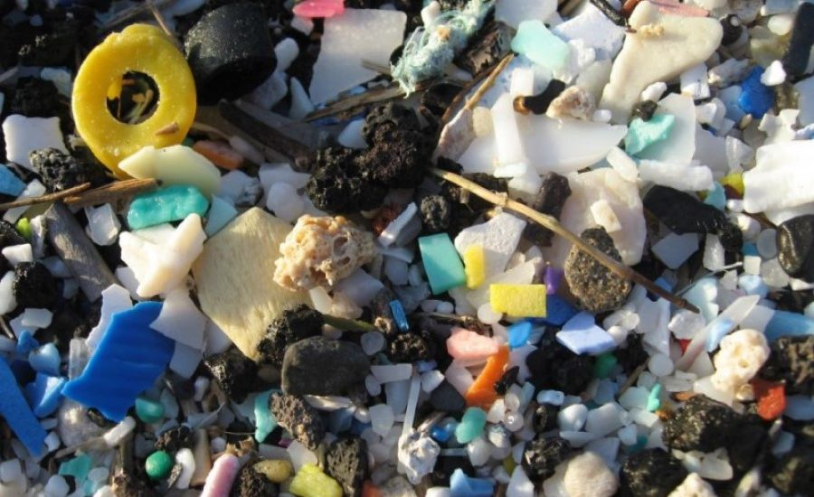 Plastic pollution – preventing an incurable disease