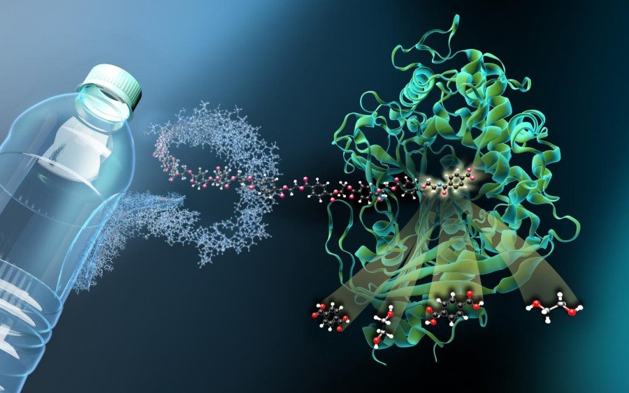 'Molecular scissors' for plastic waste: enzyme MHETase decoded