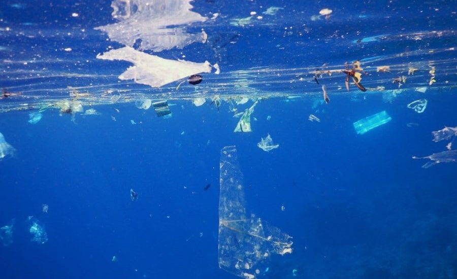 Social and economic cost of plastic waste grossly underestimated, researchers suggest