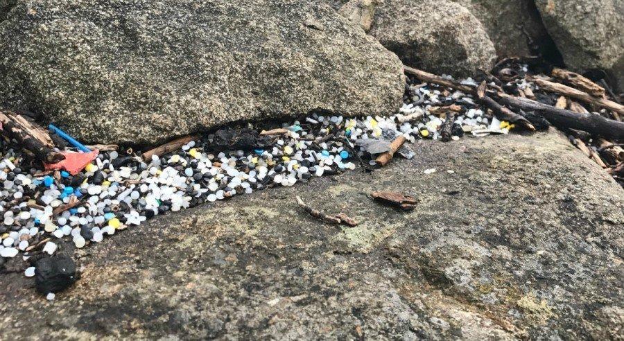 'Disturbing' scale of plastic pollution revealed