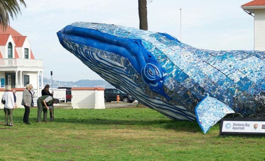 Guinness World Records acknowledges life-sized whale made of recycled plastic