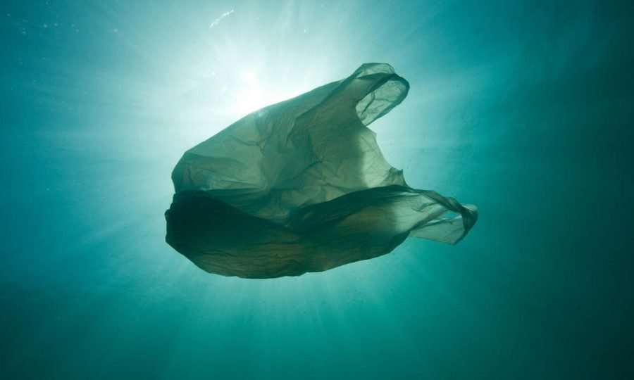 Major organizations partner with WWF to tackle plastic waste