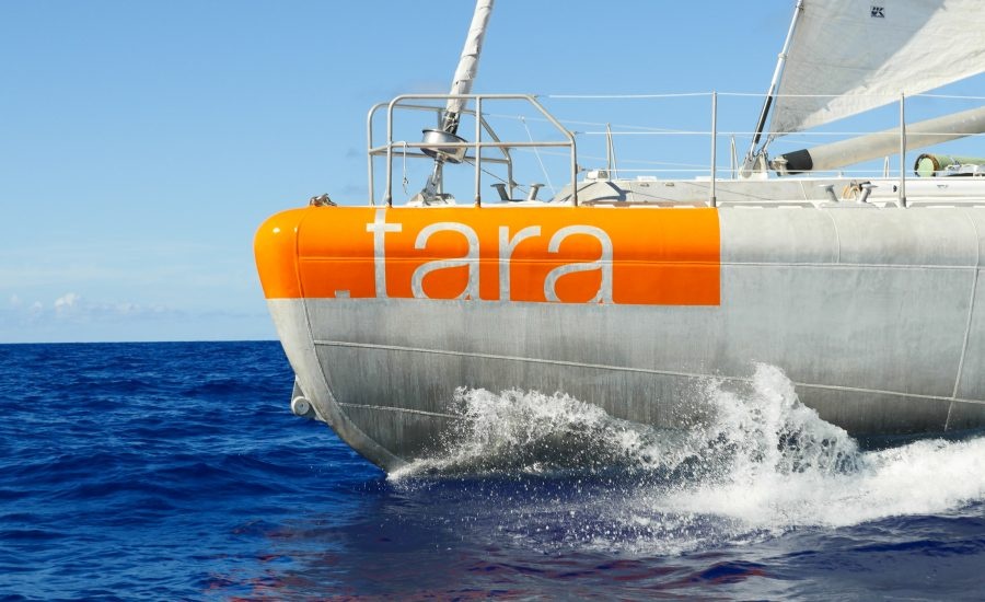 Plastics at sea: the solutions are on land!