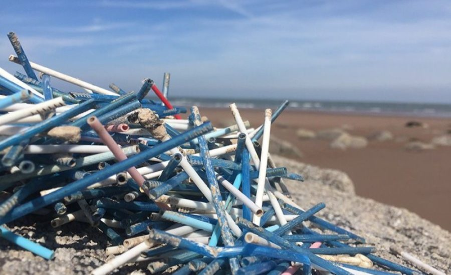 Oceans: they pollute, they pay