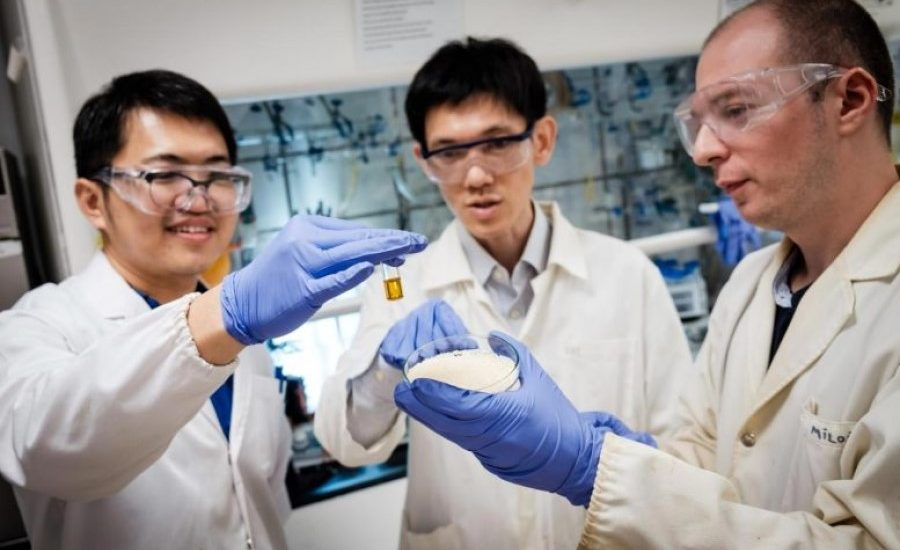 Scientists turn plastic waste into valuable chemicals with sunlight
