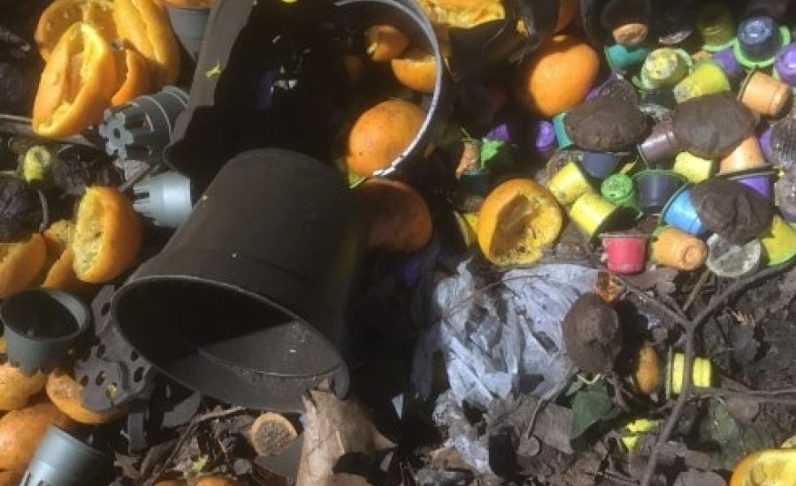 Compostable plastics disintegrate fast enough in the current Dutch biowaste disposal system