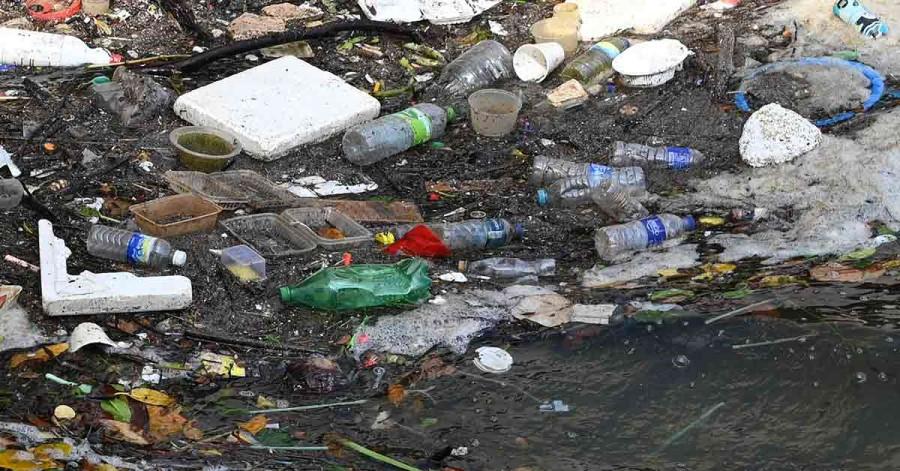 Switching to plant-based plastics