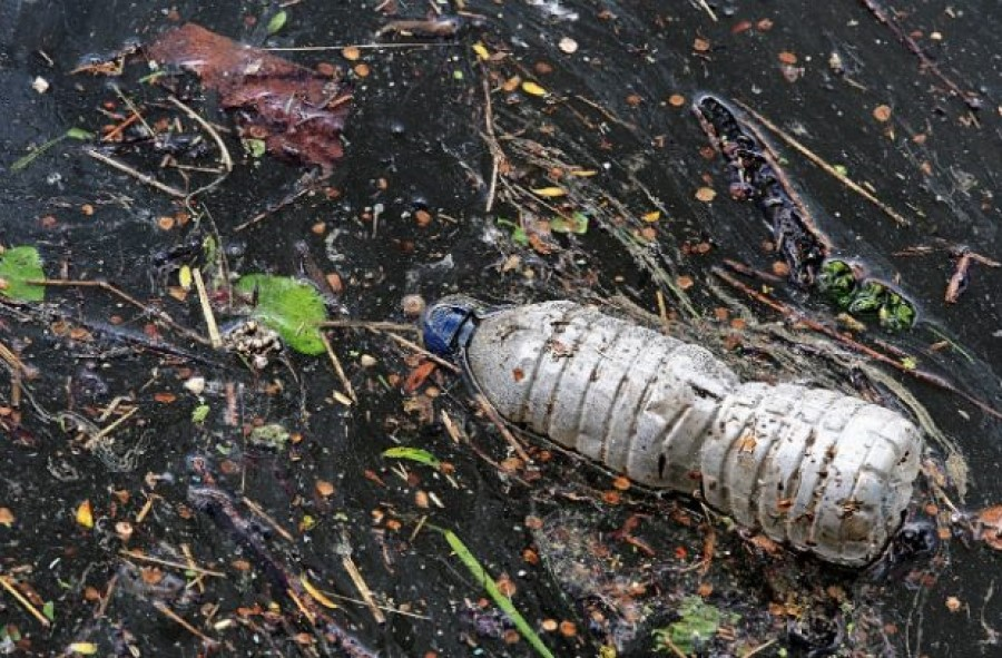 New Environment Bill will clamp down on single-use plastics and protect our precious habitats