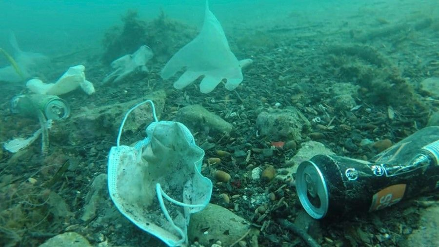 Masks and gloves 'floating' like jellyfish: the effects of COVID-19 waste in the ocean