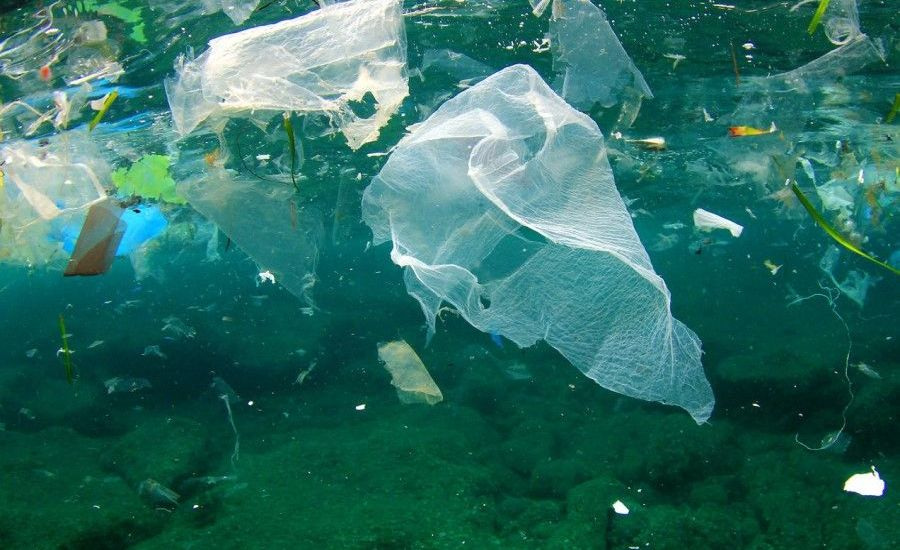 Tackle flexible plastic packaging now or risk missing UK Plastics Pact targets, urges WRAP